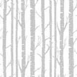 Shades Wallpaper Mystere SHA 6786 90 33 SHA67869033 By Caselio
